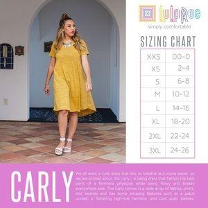 LuLaRoe Dresses - L Lularoe Jacquard Carly
